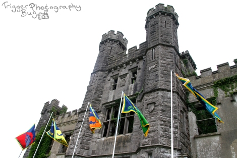 Castle Saunderson with the Phoenix Subcamp Flags