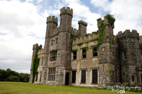 Castle Saunderson: portrait