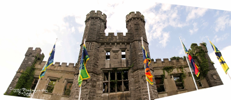 Panoramic Castle and Flags