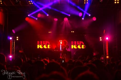 Kelis at Dublin City Block Party